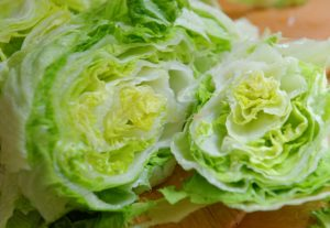 Fresh Green Iceberg lettuce