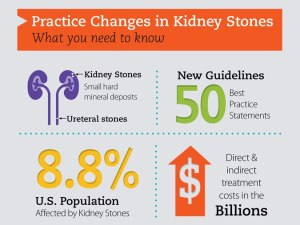 kidney-stones-infographic.png